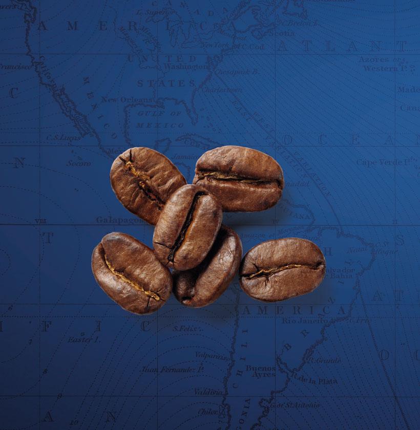 Sistema di produzione del caffè
